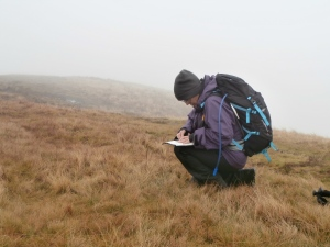 Ingrid planning her descent during a Silver NNAS assessment