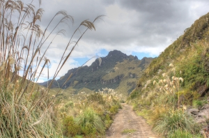 Beautiful walking in Mojanda