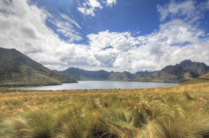 A lake fills the old caldera